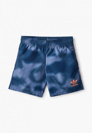 Шорты для плавания adidas Originals. Цвет: синий