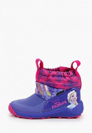 Дутики adidas. Цвет: фиолетовый