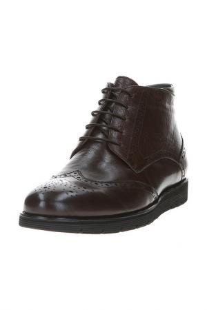 Ботинки BARCELO BIAGI. Цвет: темно-коричневый