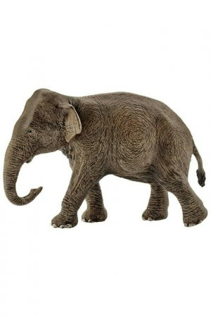 Азиатский слон, самка Schleich. Цвет: серый
