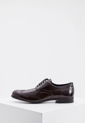 Ботинки Dolce&Gabbana. Цвет: коричневый